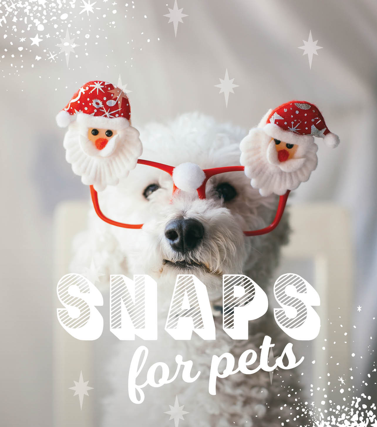 CH4806_Xmas 2019_Web Tiles_Snaps for pets_624x727px